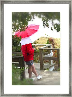 A Rainy Summer's Day Framed Print by Karol Livote