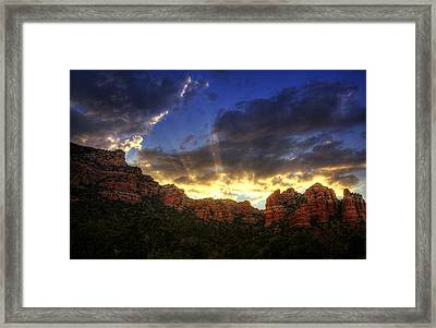 A Ray Of Sunshine  Framed Print