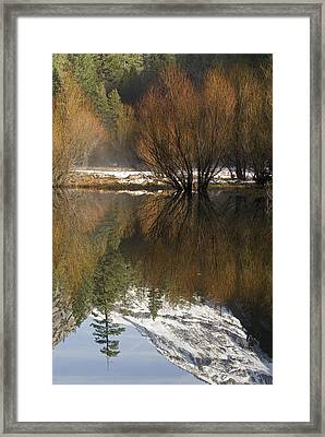 A Reflection Of Fall Trees In Mirror Framed Print by Rich Reid