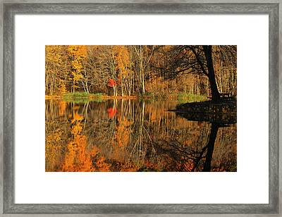 A Reflection Of October Framed Print by Karol Livote