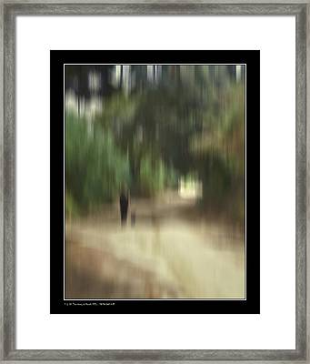 Framed Print featuring the photograph A Ride With Kurt by Pedro L Gili