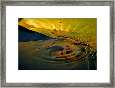 A Ripple In Time Framed Print by Rachel Rodgers