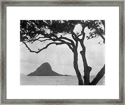 A Rock Formation In The Pacific Ocean, Oahu, Hawaii Framed Print by Brian Caissie