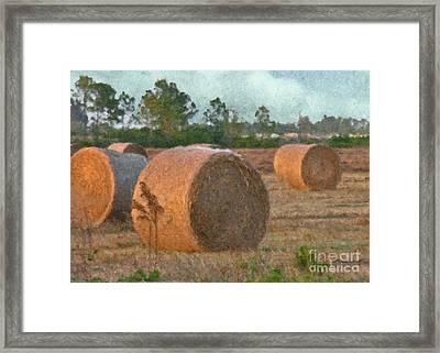 A Roll In The Hay Framed Print by Peggy Starks