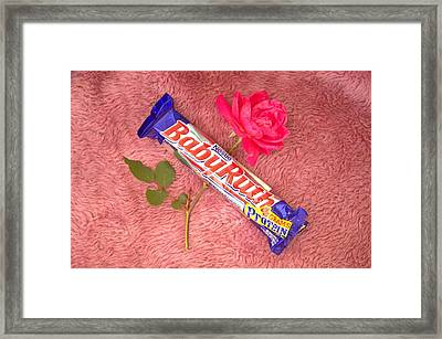 A Rose And A Babyruth Framed Print by Tom Zukauskas