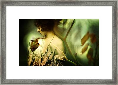 A Rose In Winter Framed Print