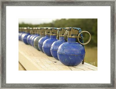 A Row Of M-67 Training Grenades Framed Print by Stocktrek Images