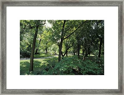A Scenic And Shady Central Park Garden Framed Print by Jason Edwards