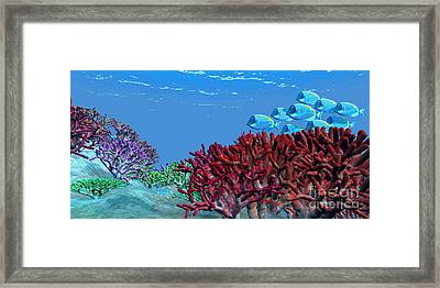 A School Of Iridescent Blue Tango Fish Framed Print by Corey Ford