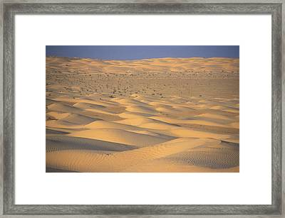 A Sea Of Dunes In The Sahara Desert Framed Print