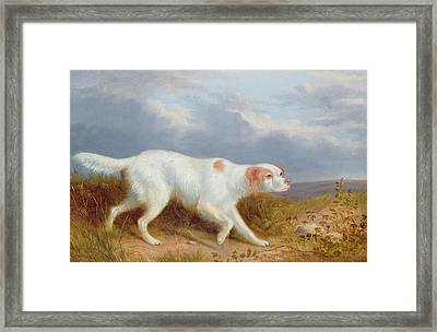 A Setter On The Moor Framed Print by Philip Reinagle