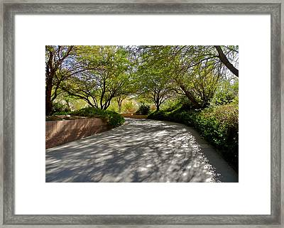 A Shadowed Drive In Palm Desert Framed Print