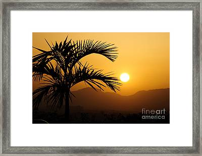 A Simple Life Framed Print by Syed Aqueel
