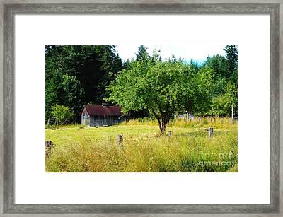 A Small Barn  Framed Print by Jeff Swan