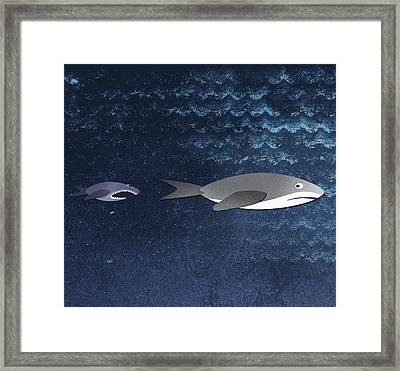 A Small Fish Chasing A Shark Framed Print