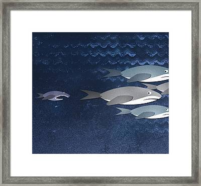 A Small Fish Chasing Three Sharks Framed Print