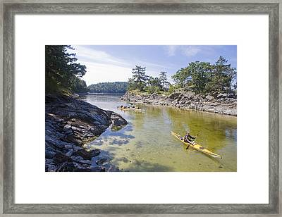 A Small Group Kayaks Framed Print by Taylor S. Kennedy