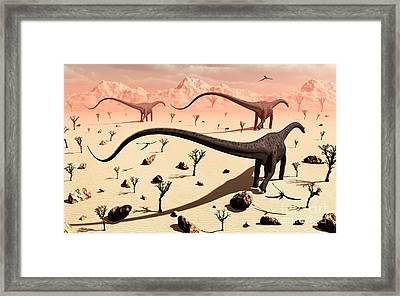 A Small Group Of Diplodocus Sauropod Framed Print by Mark Stevenson