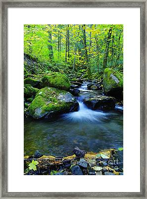 A Small Pool Opening Wide  Framed Print by Jeff Swan