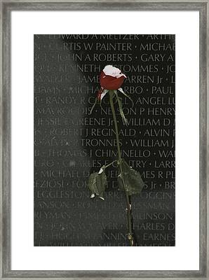 A Snow Dusted Rose Speaks Of Lasting Framed Print