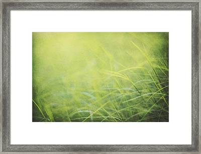 A Soft Place To Fall Framed Print by Amy Tyler