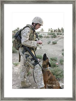 A Soldier And His Search Dog Take Framed Print by Stocktrek Images