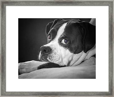 Framed Print featuring the photograph A Soulful Expression by Steve Benefiel