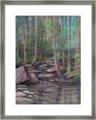 A Special Place Framed Print by Penny Neimiller