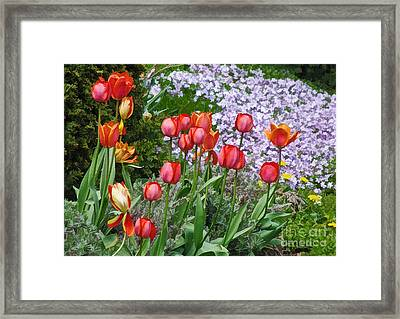 A Spring Feast Of Colours Framed Print