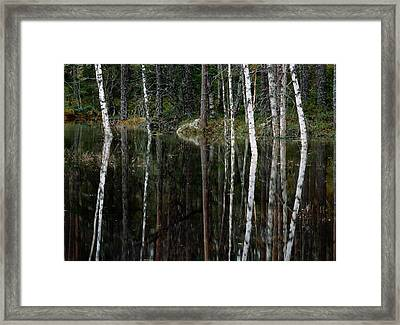 A Stream At High Water In A Woodland Framed Print by Mattias Klum