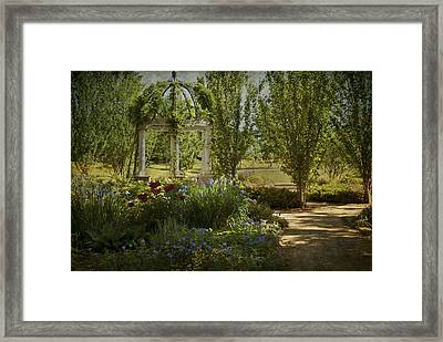 A Stroll In The Park Framed Print