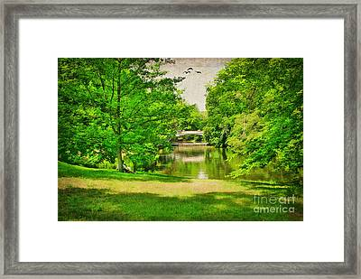 A Summer's Day Framed Print by Darren Fisher