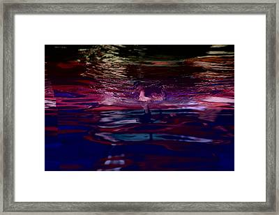 A Swimming Duck Breaks Up The Colorful Framed Print by Stephen St. John
