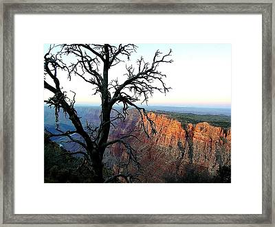 A Time Remembered Framed Print