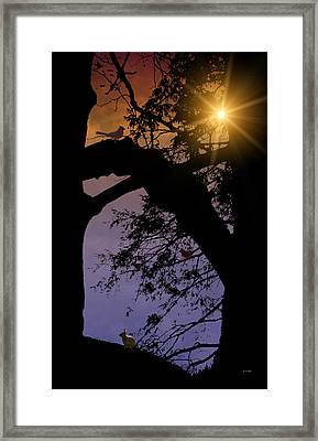 A Time To Remember Framed Print by Tom York Images