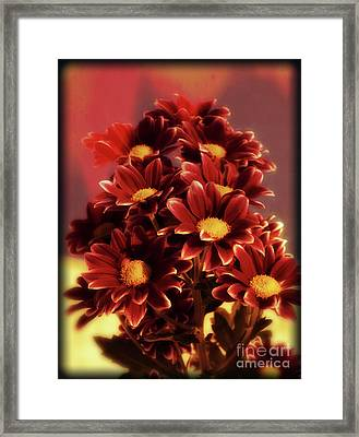 A Touch Of Crimson Framed Print
