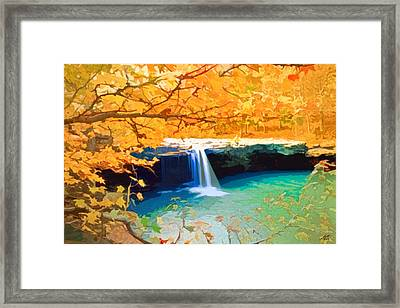 A Touch Of Fall Framed Print by Steve Huang