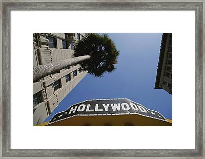 A Tour Bus Sign And A Palm Tree Scream Framed Print by Stephen St. John
