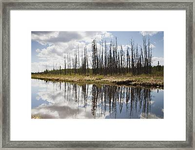 Framed Print featuring the photograph A Tranquil River With A Reflection by Susan Dykstra