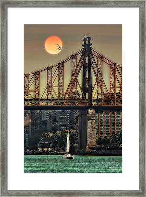 A Trip Under The Bridge Framed Print by Tom York Images