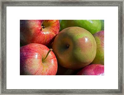 A Variety Of Apples Framed Print by Heidi Smith