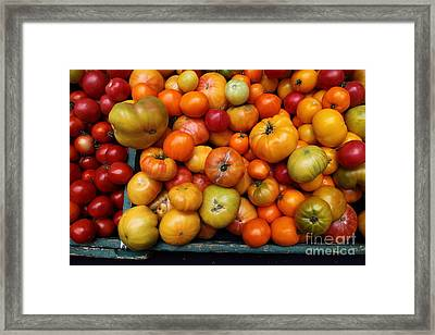 A Variety Of Fresh Tomatoes - 5d17812 Framed Print by Wingsdomain Art and Photography