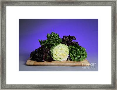 A Variety Of Lettuce Framed Print by Photo Researchers, Inc.