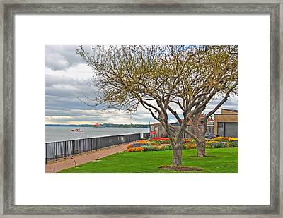 Framed Print featuring the photograph A View From The Garden by Michael Frank Jr