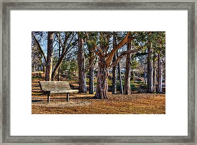 A Walk In The Park Framed Print by Doug Long