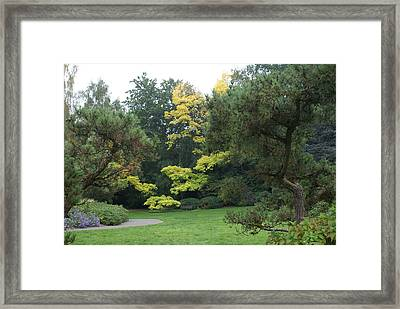 Framed Print featuring the photograph A Walk In The Park by Jerry Cahill