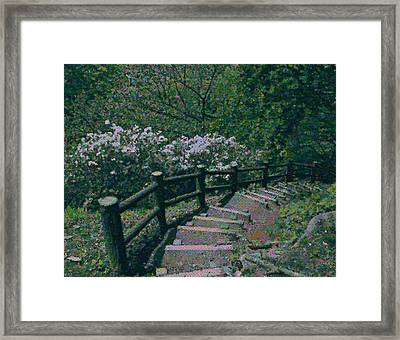 Framed Print featuring the photograph A Walk In The Park by Tim Ernst