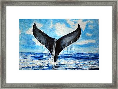 A Whales Tail Framed Print