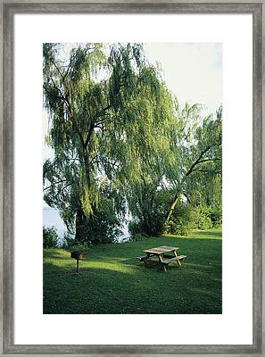 A Willow-lined Lakeside Picnic Area Framed Print by Skip Brown