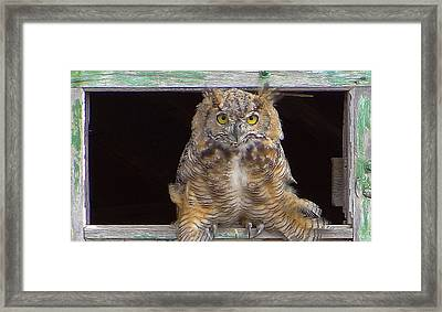 A Windowsill Built For Two Framed Print by Blair Wainman